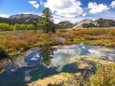 Wyoming 2004