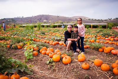Tanaka Farms Pumpkin Patch:  October 17, 2015