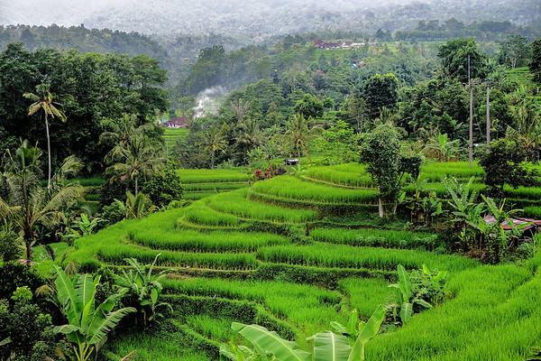 Asia - Bali, Indonesia