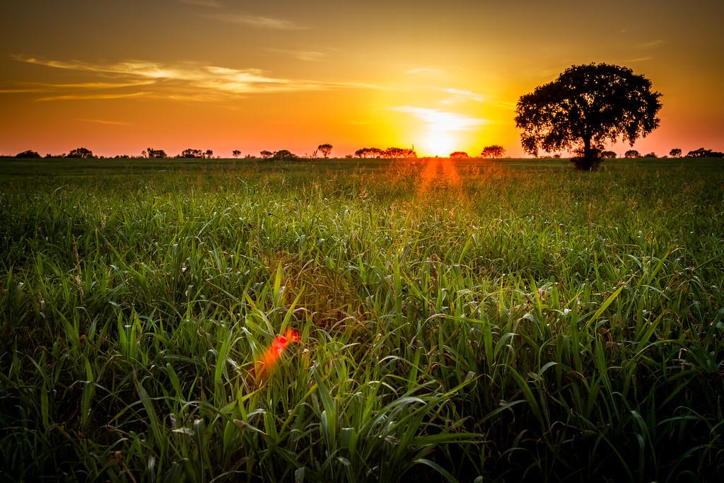 IMAGE: http://alfredomora.smugmug.com/Landscapes/General-Landscapes/i-GZ5h4z4/0/XL/20120920-Texas-sunset-001-proc-XL.jpg
