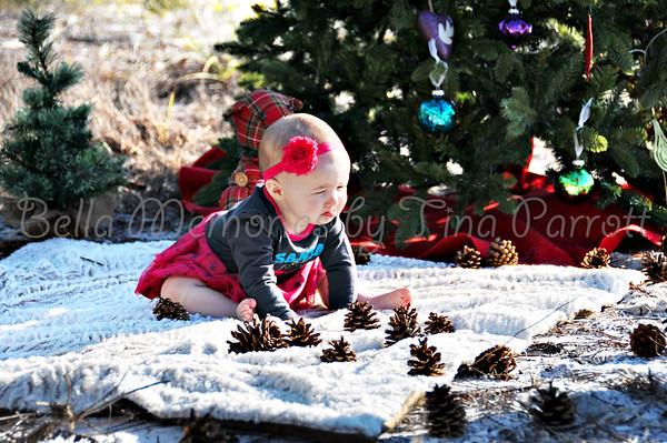 Christmas Minis 2013