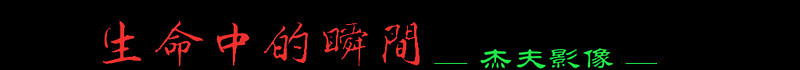 logo -xffffaa (5).jpg