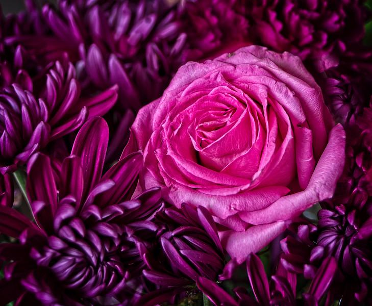 S-36-2_Colour_BMcCann- Purple Patch.jpg