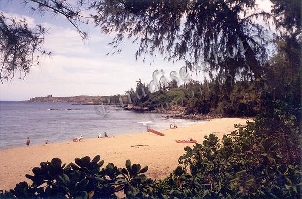 Molokai 2002