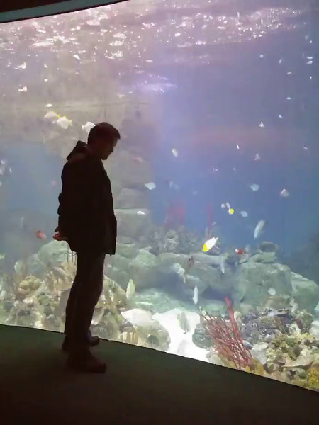 Laurence at the National Marine Aquarium