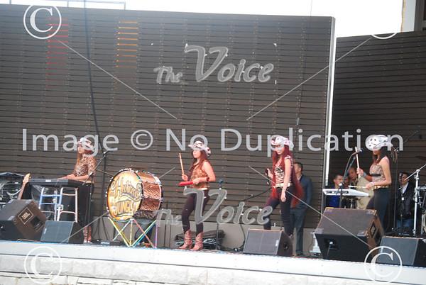 Fiestas Patrias in RiverEdge Park in Aurora, Ill 2013