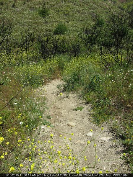 20100515046-Doc Larson Trail Recon.JPG