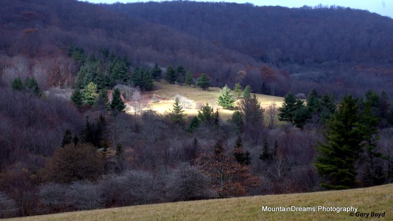 Elk Hollow Ridge II, Roaring Creek Road, NC