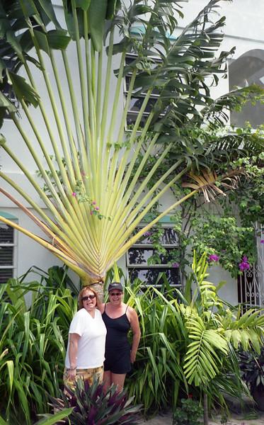 Belize 03-2003008.jpg
