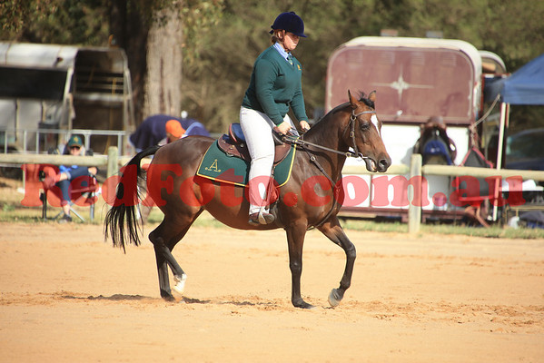 2014 03 22 ASH State Champs Ridden Classes