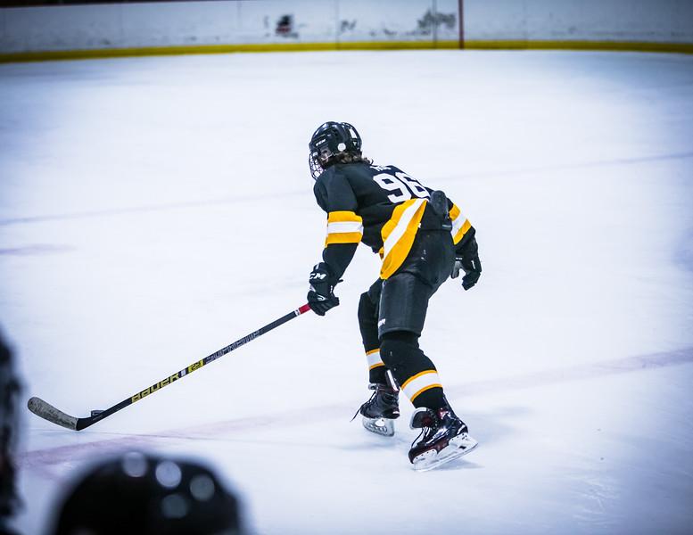 Bruins2-459.jpg