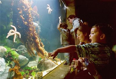 Atlantis Marine World Aquarium, Riverhead, NY