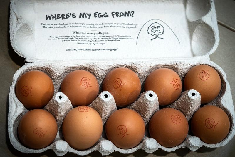 Eggs 93.jpg