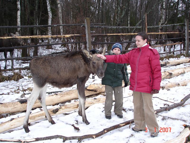 2006-12-31 Новый год - Кострома 140.JPG
