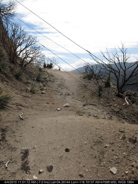 20100404041-Angeles National Forest, Strawberry Peak trail.JPG