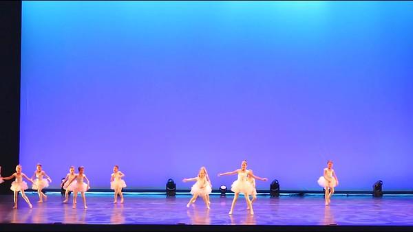 Sandpiper Ballet FV