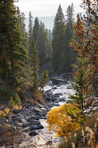 Yellowstone-71.jpg