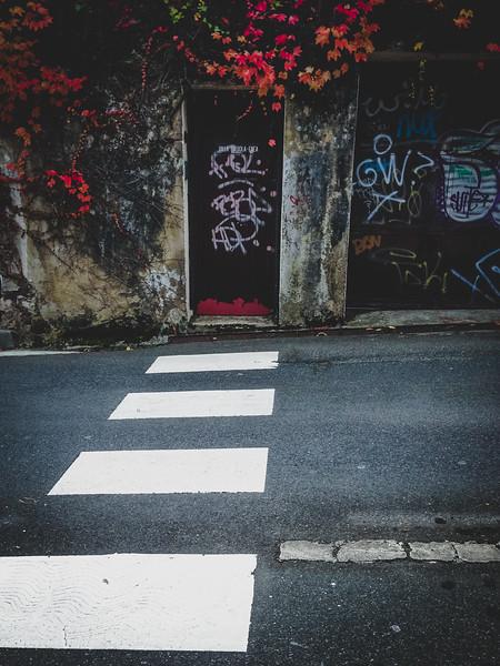 Walk home-10.jpg