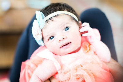 Newborn baby and family photos at home, newborn Rachel