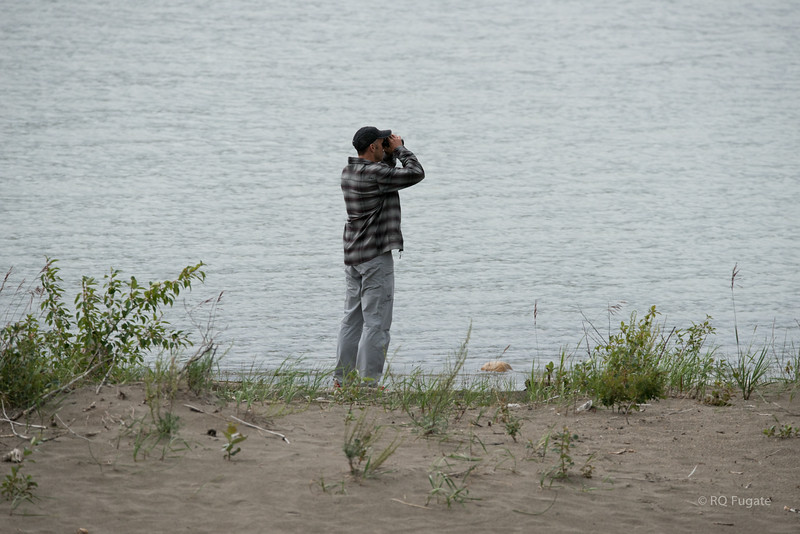 Joe, our guide, looking for the big bull moose (we never found him).