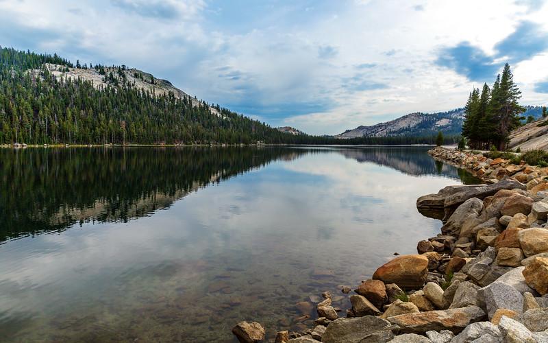 Yosemite Scene-.jpg