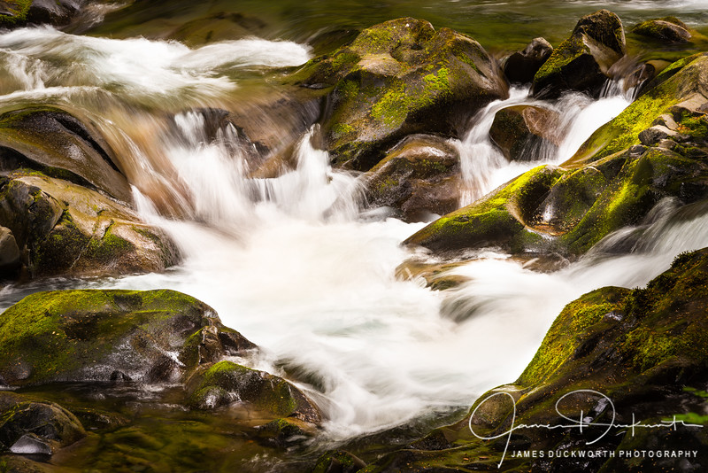 """Sol Duc River """"Waterhole"""", Olympic National Park"""