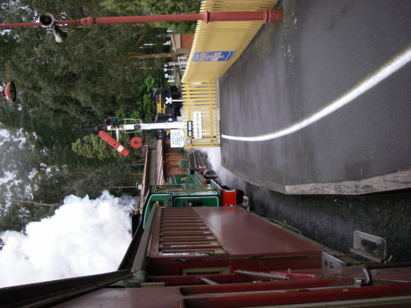 Puffing Billy and Phillip Island 033.JPG