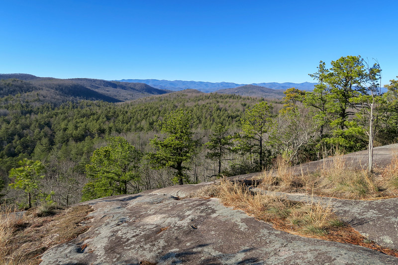 DuPont State Forest Hikes