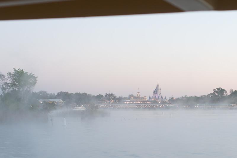 Misty Morning Cinderella Castle - Magic Kingdom Walt Disney World