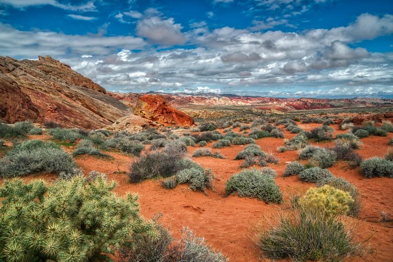 Valley of Fire NV 2020-15.jpg