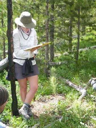 Wild Rockies Summer Semester, 2018
