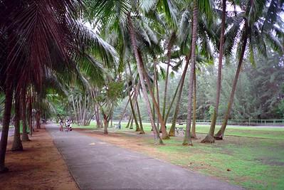 Singapore 2000