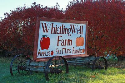 Whistling Well Farm, MN