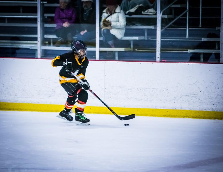 Bruins2-397.jpg