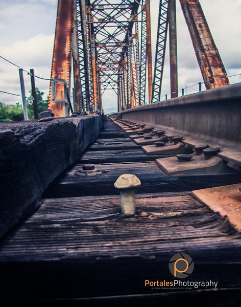 portalesphotography--13.jpg