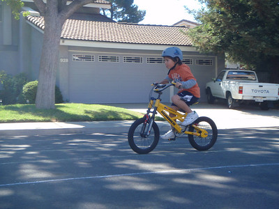 Neighborhood bicycle rodeo