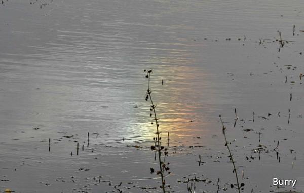 20060611_3476-copy.jpg