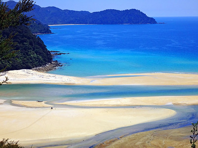 Abel Tasman Track in January