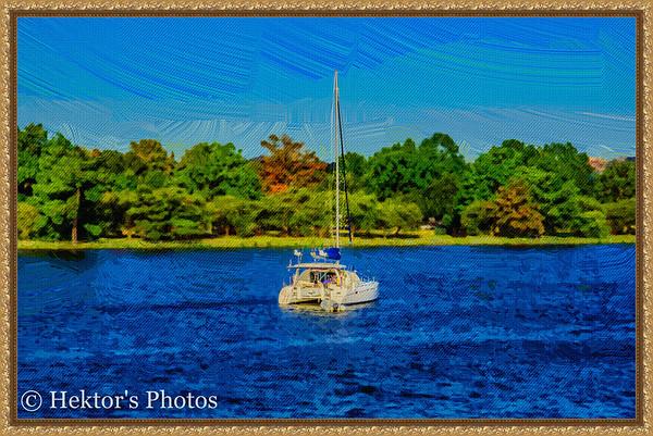 Mt Vernon & Potomac