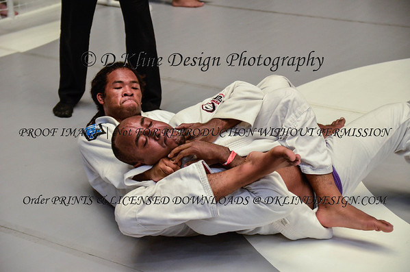 MARYLAND  OPEN ADULT GI  PURPLE & BLUE BELTSJUNE 7 2014