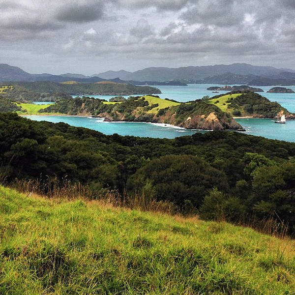 Bay of Islands, in moody layers + a wee sailboat #newzealand