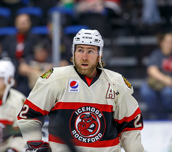 IceHogs vs Flames 03-21-15