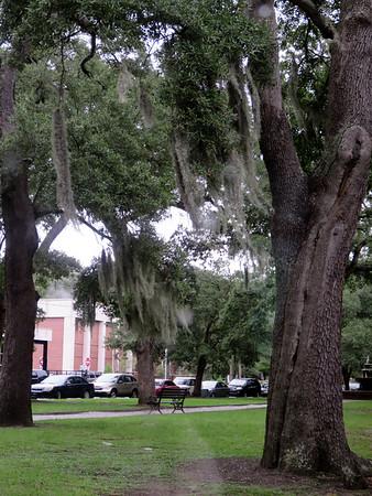 2014-09-24 Charleston Tour