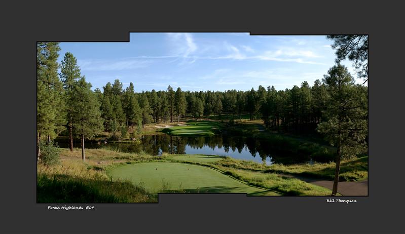 Forest Highlands 14.jpg