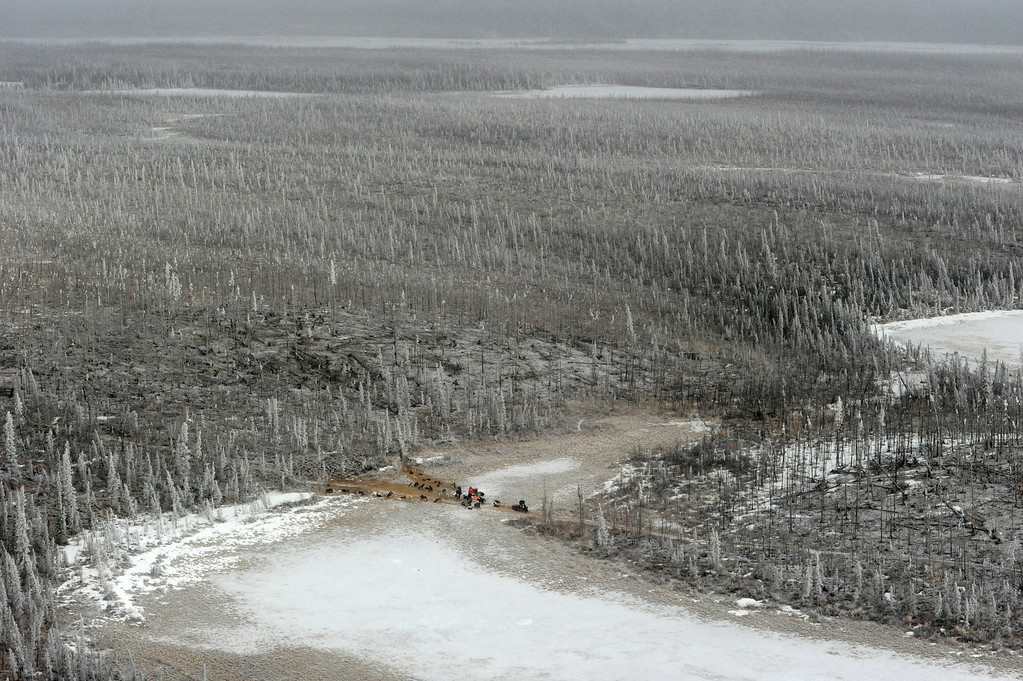 . Rick Casillo, Charley Bejna and Jake Berkowitz are parked in the middle of the Farewell Burn during the  Iditarod Trail Sled Dog Race on Tuesday, March 4, 2014. Berkowitzís sled is busted beyond repair and he scratched.  (AP Photo/The Anchorage Daily News, Bob Hallinen)
