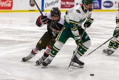 Game #41 Calgary Northstars vs Beardy's Blackhawks_12-30-2018