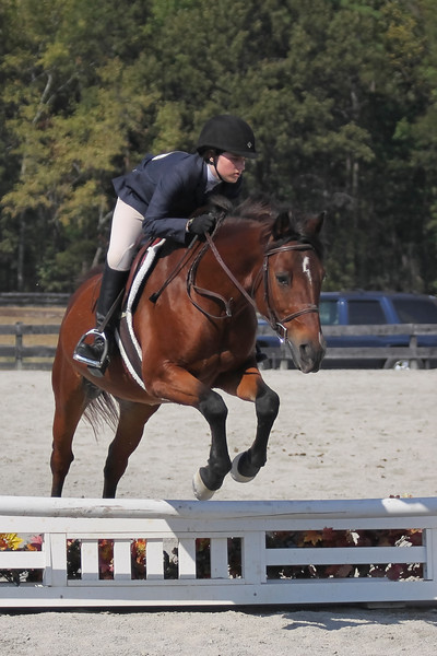 Ranson photography is one of Richmond's equestrian photography companies.  They do local shows in the area, and will even come to your barn to do a photo session.