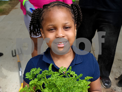 texas-group-partners-with-over-100-schools-nationwide-to-help-build-gardens-for-handson-school-lessons