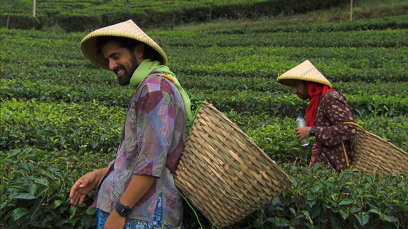 """. \""""Cobra in my Teeth\""""-- In Detour B, Cousins Jamal (left) and Leo (right) must dress as an Indonesian tea worker and search for a pair of shears in the steep, terraced tea fields in order to receive the next clue on THE AMAZING RACE, Sunday, Dec 1 (8:00-9:00 PM, ET/PT) on the CBS Television Network. Photo: CBS©2013 CBS Broadcasting, Inc. All Rights Reserved"""