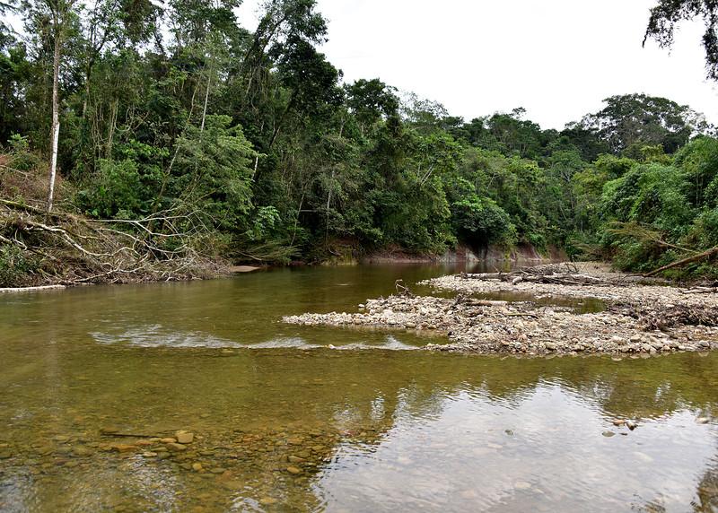 BOL_4104-7x5-Down River.jpg